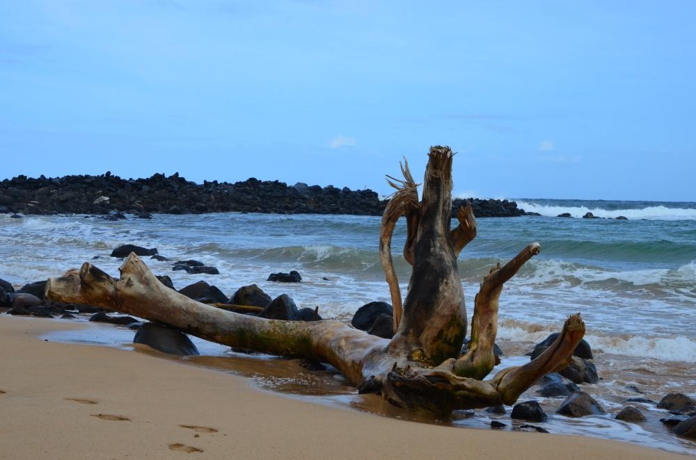 Kauai // Die Garteninsel