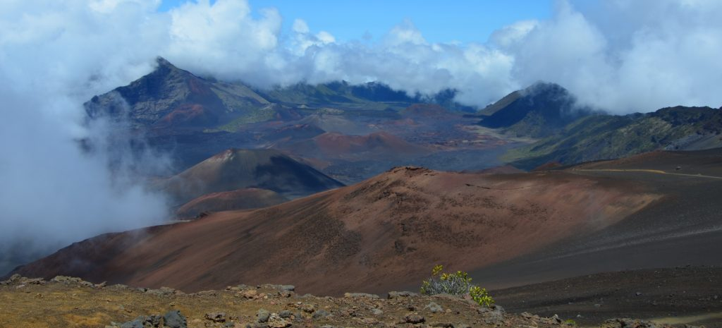 Maui // Hawaii